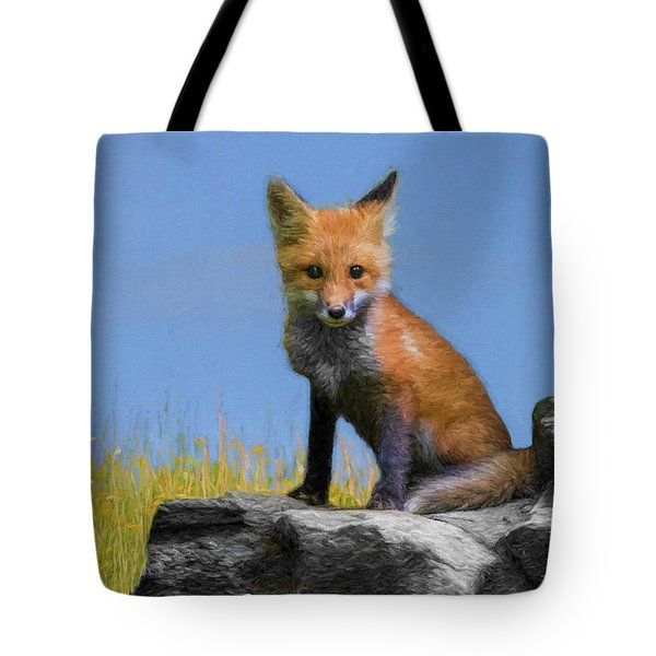 Paintography On Top Of The Rocks Tote Bag