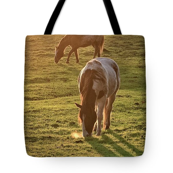 Paints Backlit Tote Bag