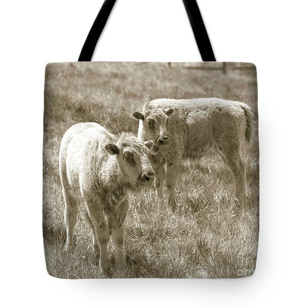 Tote Bag featuring the photograph Pair Of Baby Buffalos by Rebecca Margraf