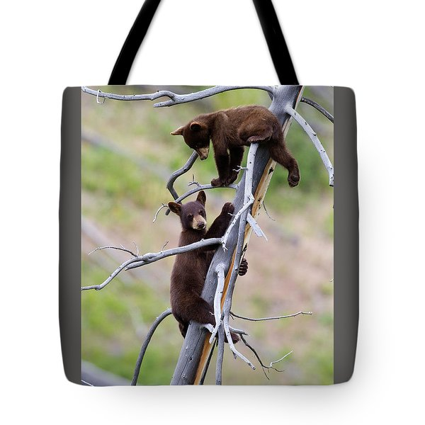 Pair Of Bear Cubs In A Tree Tote Bag