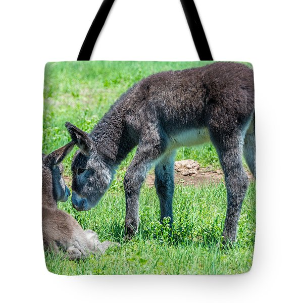 Pair Of Burros Tote Bag