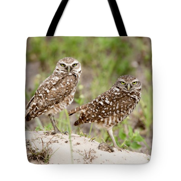 Pair Of Burrowing Owls Tote Bag