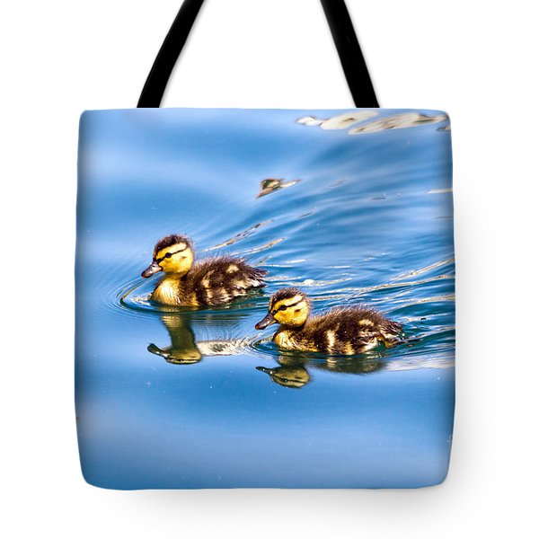 Tote Bag featuring the photograph Duckling Duo by Kate Brown