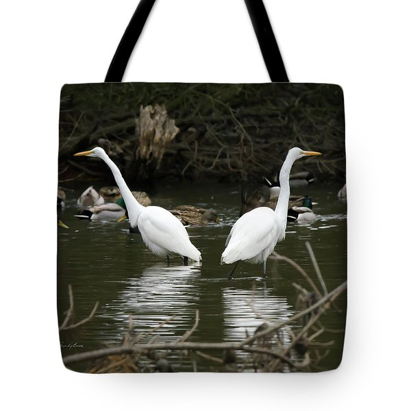 Pair Of Egrets Tote Bag by George Randy Bass