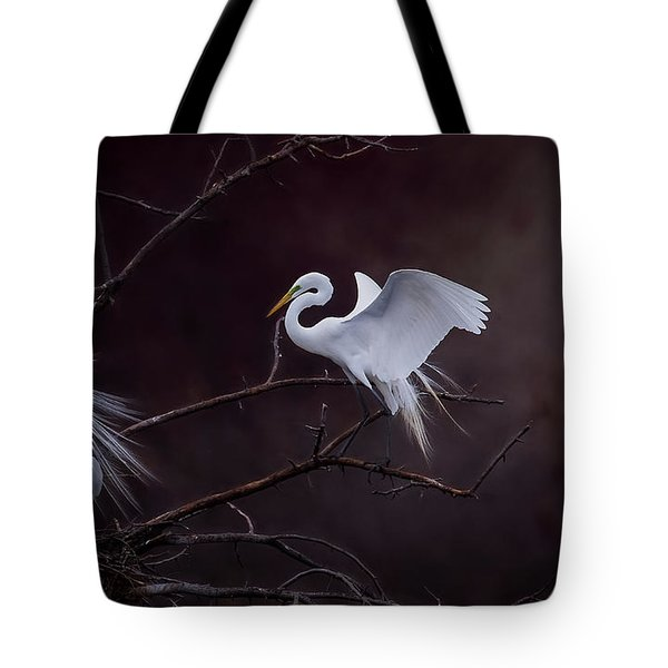Pair Of Egrets Tote Bag by Kelly Marquardt