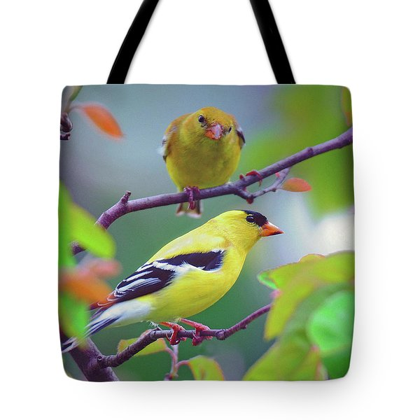 Tote Bag featuring the photograph Pair Of Goldfinches by Rodney Campbell