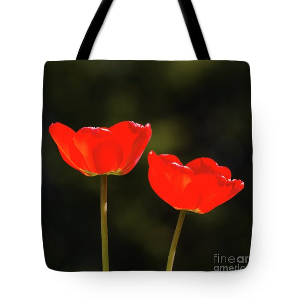 Tote Bag featuring the photograph Pair Of Red Shiny Tulips by Kennerth and Birgitta Kullman