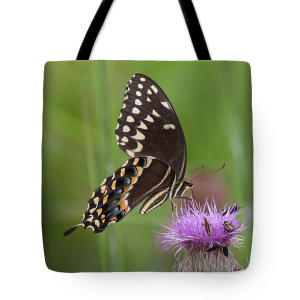 Palamedes Swallowtail And Friends Tote Bag