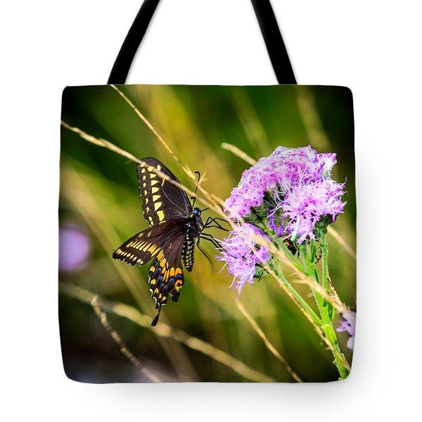 Palamedes Swallowtail Tote Bag