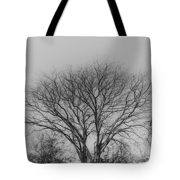 Pale Shades Tote Bag