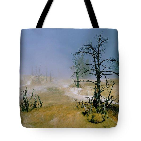 Palette Springs Tote Bag