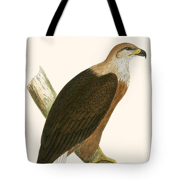 Pallas's Sea Eagle Tote Bag
