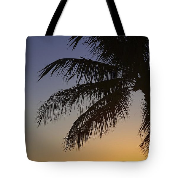 Palm At Sunset Tote Bag by Brandon Tabiolo - Printscapes