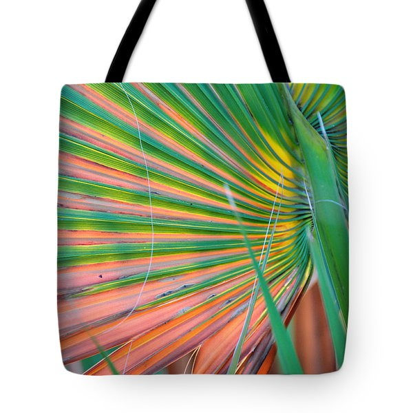 Palm Colors Tote Bag by Jan Amiss Photography