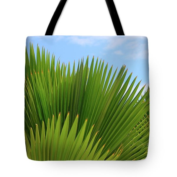 Palm Fans Tote Bag