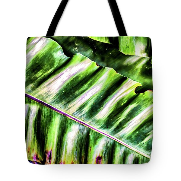 Palm Fronds Up Close Tote Bag