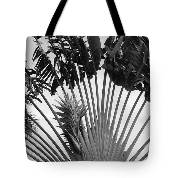 Palm Frons Tote Bag by Rob Hans
