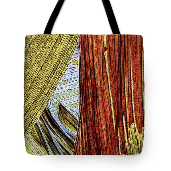 Tote Bag featuring the photograph Palm Leaf Abstract by Ben and Raisa Gertsberg