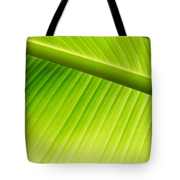 Tote Bag featuring the painting Palm Leaf Background by Yurix Sardinelly