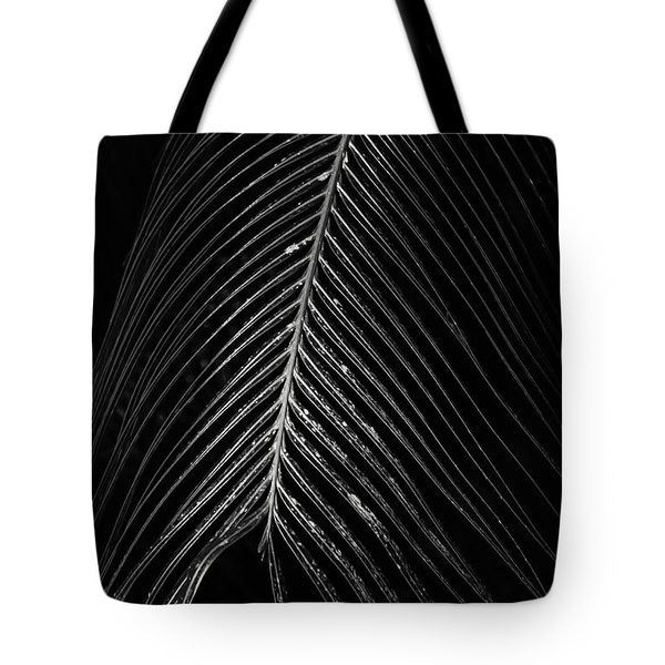 Tote Bag featuring the photograph Palm Leaf by Deborah Benoit