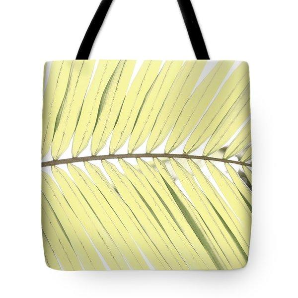 Palm Leaf Tote Bag by Gaspar Avila