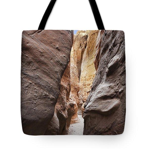 Palm Slot Canyon Tote Bag