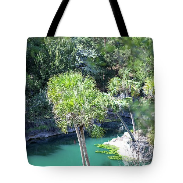 Palm Tree Blue Pond Tote Bag