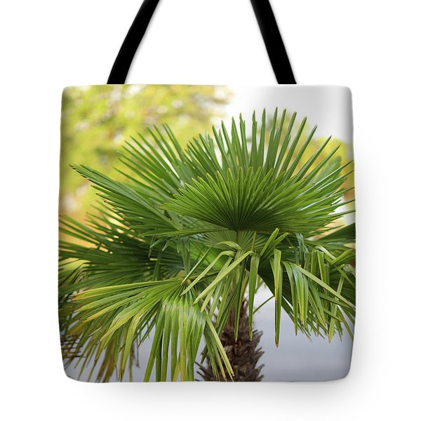 Palm Tree Just There Tote Bag