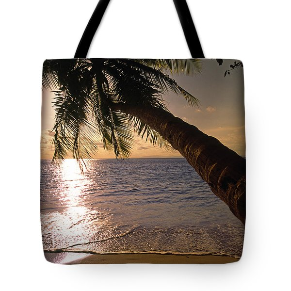 Palm Tree Over The Beach In Costa Rica Tote Bag