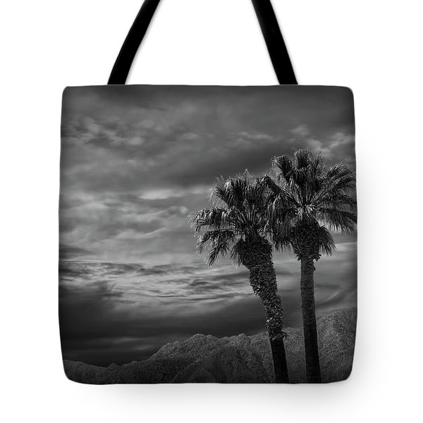 Tote Bag featuring the photograph Palm Trees By Borrego Springs In Black And White by Randall Nyhof