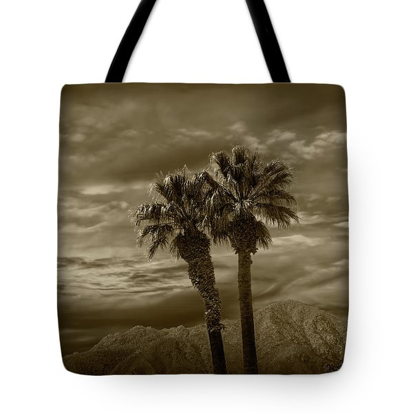 Tote Bag featuring the photograph Palm Trees By Borrego Springs In Sepia Tone by Randall Nyhof