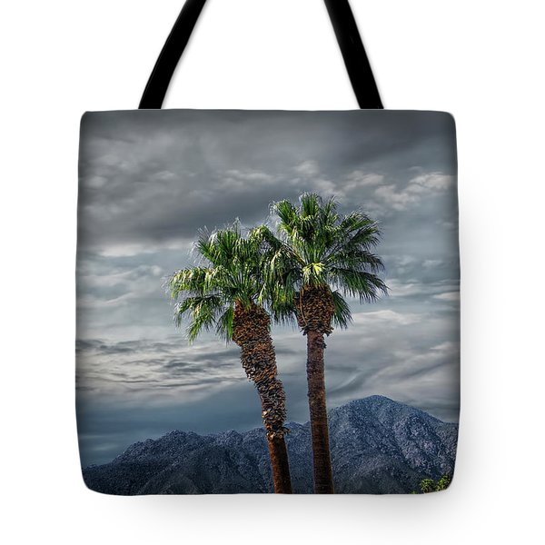 Tote Bag featuring the photograph Palm Trees By Borrego Springs In The Anza-borrego Desert State Park by Randall Nyhof