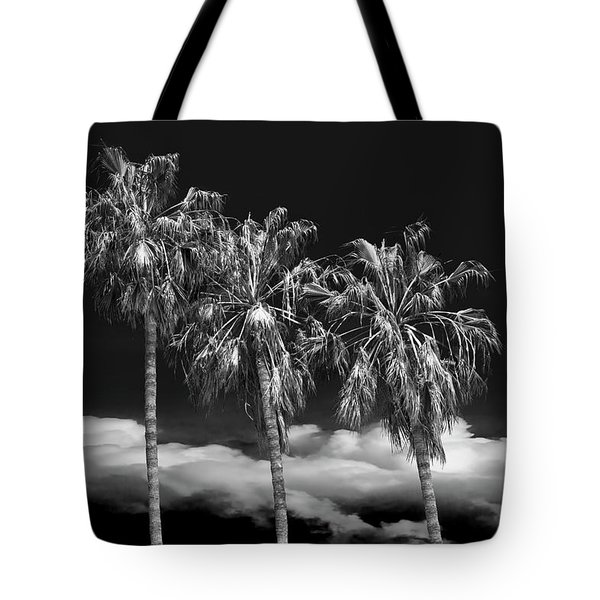 Tote Bag featuring the photograph Palm Trees In Black And White On Cabrillo Beach by Randall Nyhof