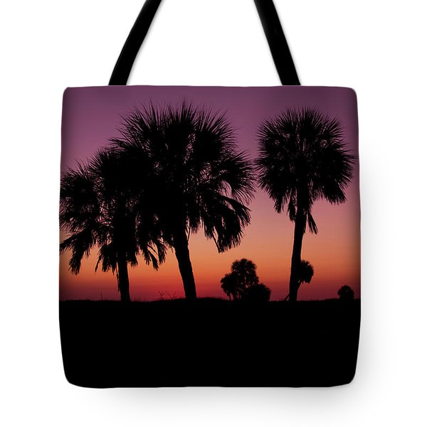 Tote Bag featuring the photograph Palm Trees Silhouette by Joel Witmeyer