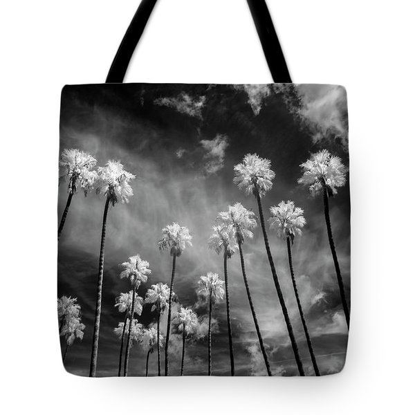 Palms Tote Bag by Sean Foster