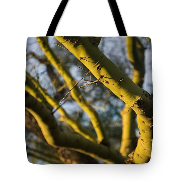 Palo Verde In Phoenix Airizona Tote Bag