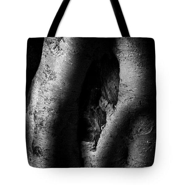 Palo Verde Treee Tote Bag