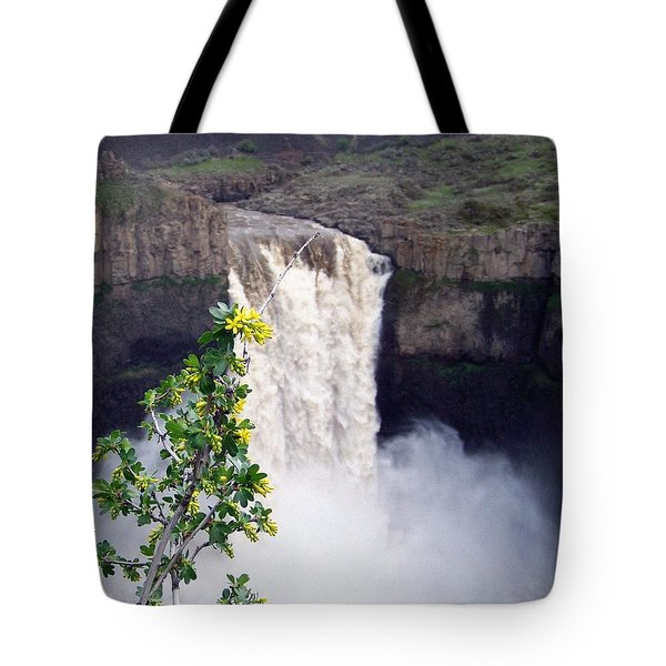 Tote Bag featuring the photograph Palouse Falls by Charles Robinson