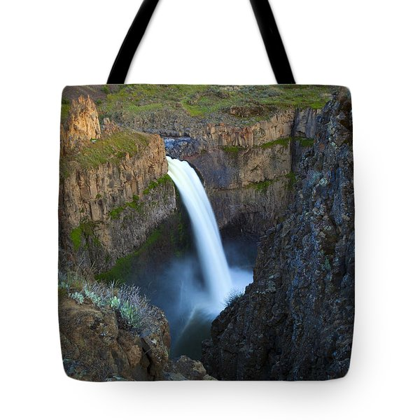 Palouse Falls Tote Bag by Mike  Dawson