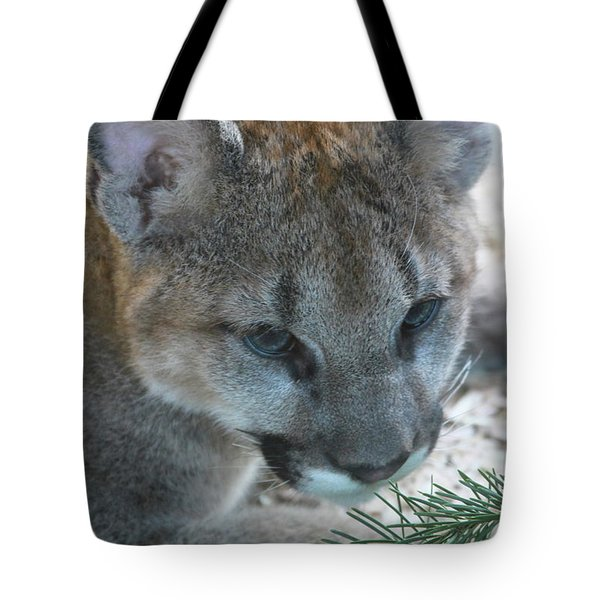 Tote Bag featuring the photograph Palus by Laddie Halupa