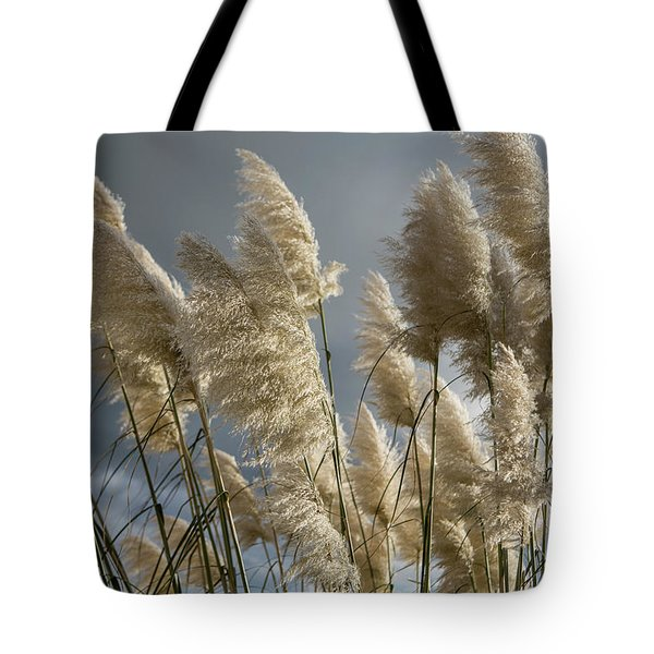 Pampas Grass Tote Bag