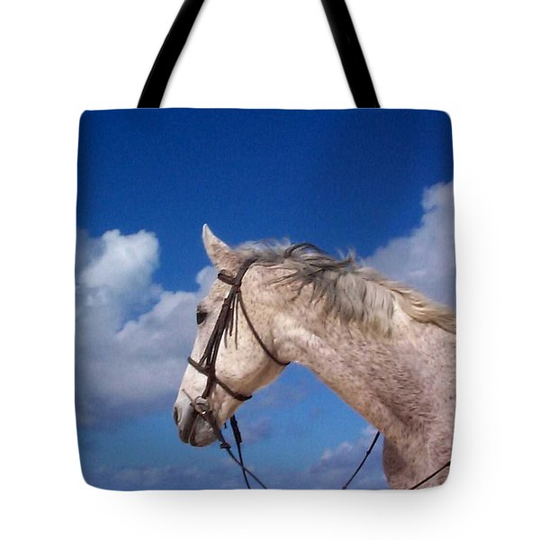 Pancho Tote Bag by Mary-Lee Sanders
