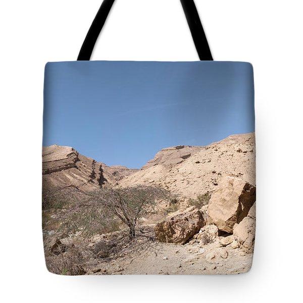 Panorama On Genesis Land 03 Tote Bag