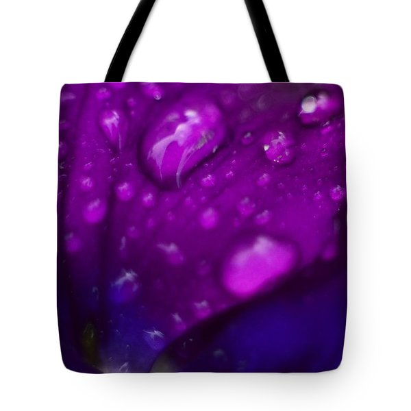 Pansy Rain Macro Tote Bag by Bonfire Photography