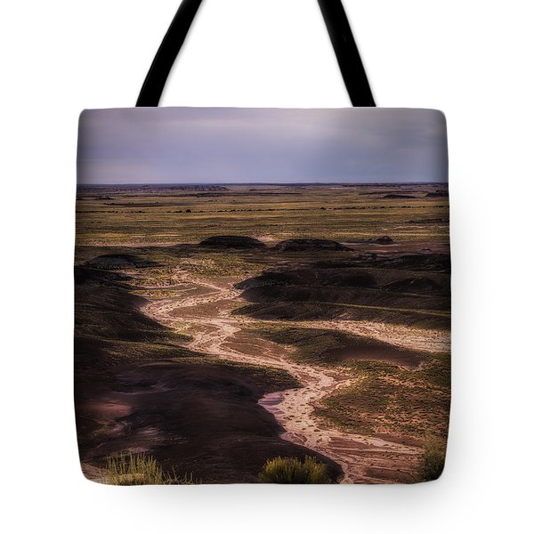 Tote Bag featuring the photograph Painted Desert No. 1  ... by Chuck Caramella