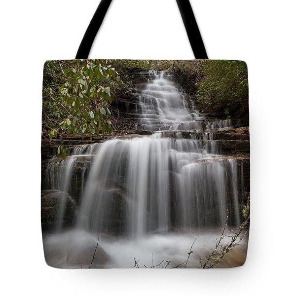 Panther Falls Tote Bag