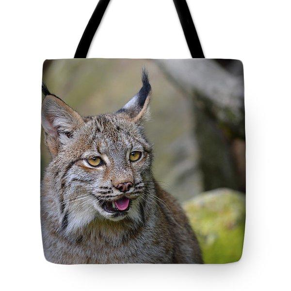 Panting Lynx Tote Bag
