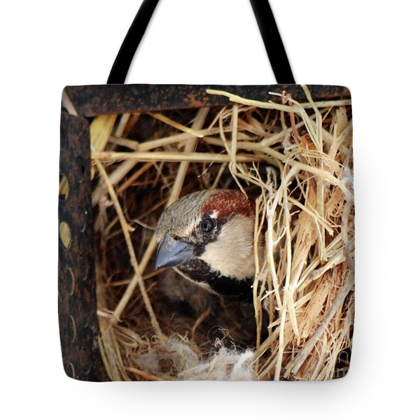 Papa Bird Tote Bag