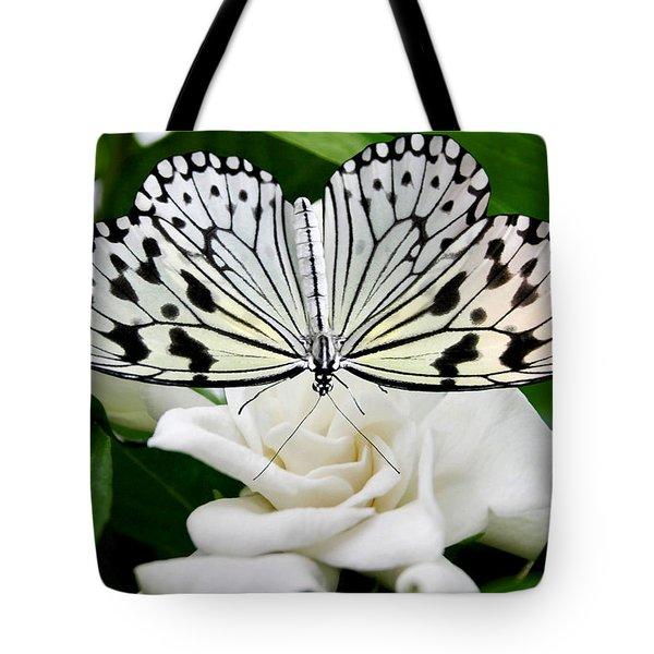 Paperkite On Gardenia Tote Bag by Kristin Elmquist