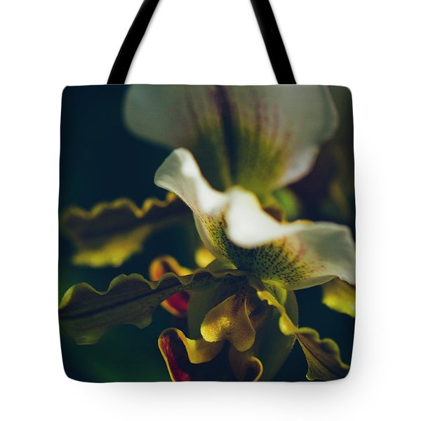 Tote Bag featuring the photograph Paphiopedilum Villosum Orchid Lady Slipper by Sharon Mau